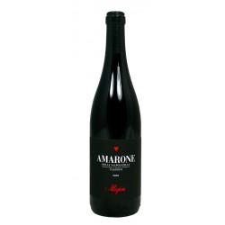 Amarone  della Valpolicella Classico 2001 - Allegrini