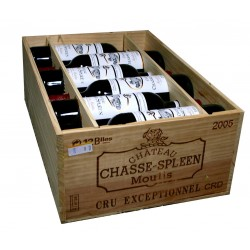 Château Chasse Spleen 2005 (CBO 12 bout.)